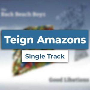 Digital – Teign Amazons